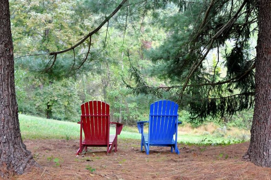 Two Adirondack chairs in the woods